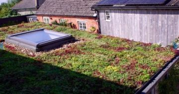 Sedum Roofing for Shipping Containers